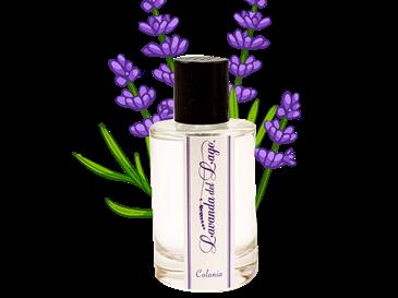 Cologne Lavender 100ml